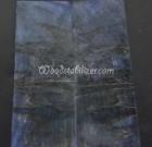 Blue Ambrosia Maple
