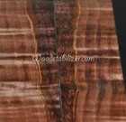 Brown Figured Curly Maple